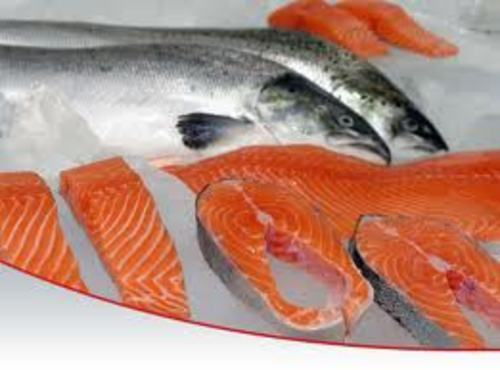 Fish And Seafood Processor Business In Bc For Sale