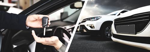 Independent Profitable Car Rental Company