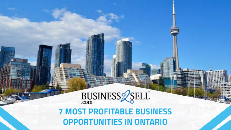 7 Most Profitable Business Opportunities in Ontario